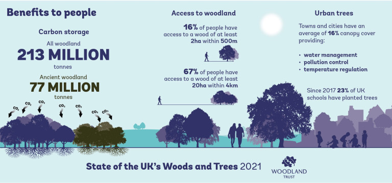 The benefits of woodlands in the UK. (Credits: PA)