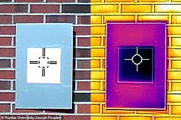 An infrared camera shows how a sample of the whitest white paint (the dark purple square in the middle, right) actually cools the board below ambient temperature, something that not even commercial 'heat rejecting' paints do.