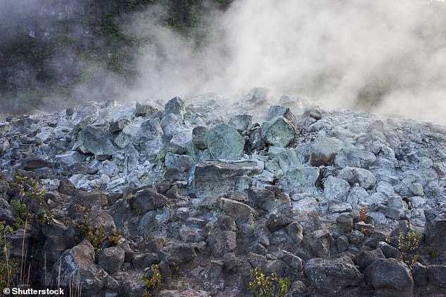 Hydrogen sulfide is found naturally in crude petroleum, natural gas, volcanic gases, hot springs and groundwater.Human exposure to exogenous hydrogen sulfide is principally via inhalation, and the gas is rapidly absorbed through the lungs. Pictured,hydrogen sulfide and other gases seep out of the ground along with groundwater steam at Sulphur Banks (Ha'akulamanu) in Hawaii Volcanoes National Park