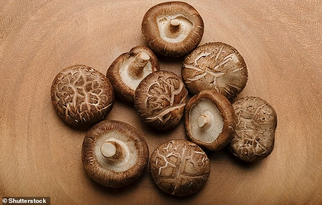 Shiitake mushroom (Lentinula edodes) - native toEast Asia.Even though shiitake, oyster, maitake and king oyster mushrooms have higher amounts of the amino acid ergothioneine than white button, cremini and portabello mushrooms, the researchers found that people who incorporated any variety of mushrooms into their daily diets had a lower risk of cancer