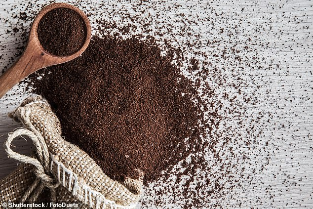 Coffee could become more bland tasting in future as rising temperatures due to climate change could result in less intense varieties of beans, study shows. Stock image