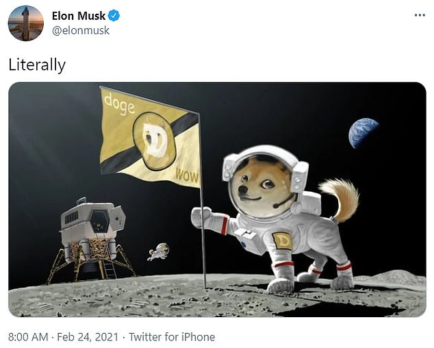 Dogecoin fan:Tesla's boss Elon Musk tweeted his approval for the crypto in February