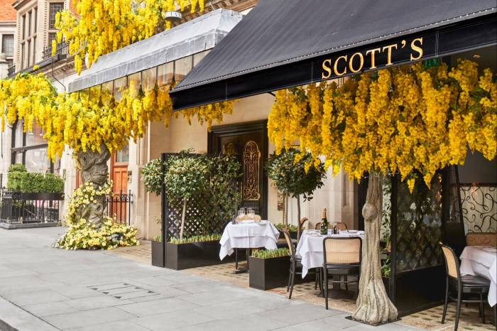 The Perrier-Jouët Terrace at Scott's serves seasonal seafood, meat and game under a canopy of golden blossom