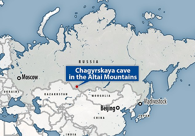 The Chagyrskaya cave also provided Neanderthal DNA that let researchers show off the new technology that could be used toopen up 'large parts of human history' for more analysis