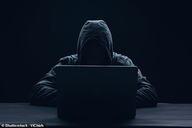 One problem faced by security companies is that accounts are often behind an access barrier that asks questions relating to random personal details such as 'name of first pet'. But these random facts have gained a new worth to criminals in the age of online scamming and phishing attempts (stock image)