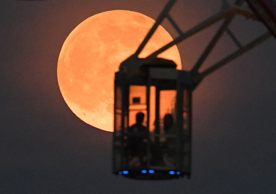 People riding a ferris wheel gaze at the Strawberry moon