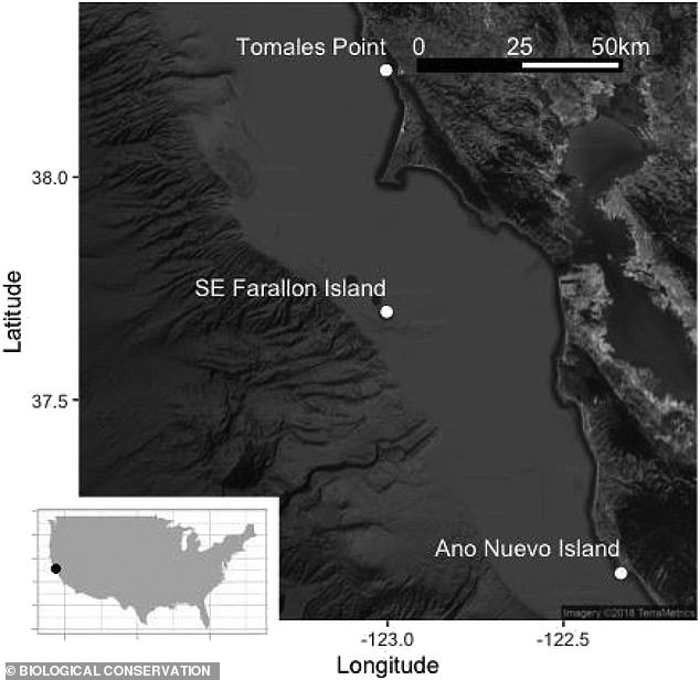 The 'red triangle' isthe area between Monterey Bay, the Farallon Islands and Bodega Bay