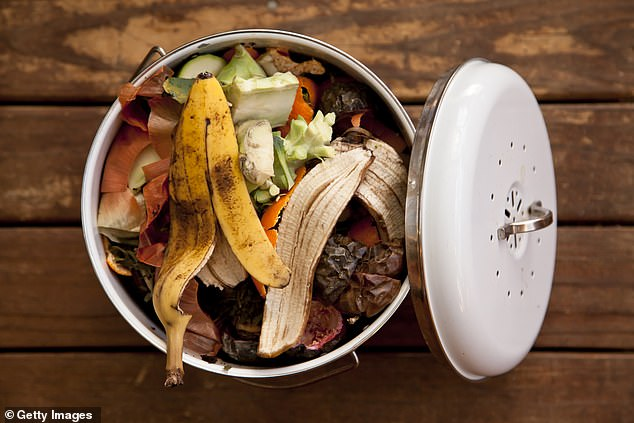 It's estimated that between 30 and 40 percent of food is wasted annually in the US, or approximately 20 pounds per per per month