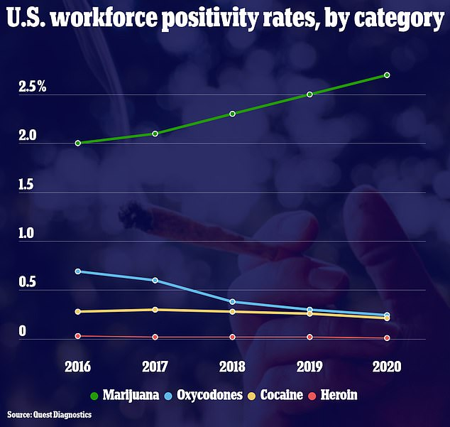 Despite the overall decrease in positivity rates, more testees were positive for marijuana in 2020 than in 2019, a trend that has continued over the past five years