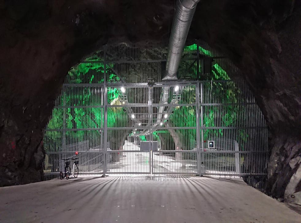 <p>The Lefdal Mine in Norway now houses a bitcoin mine running off 100 per cent renewable energy</p>