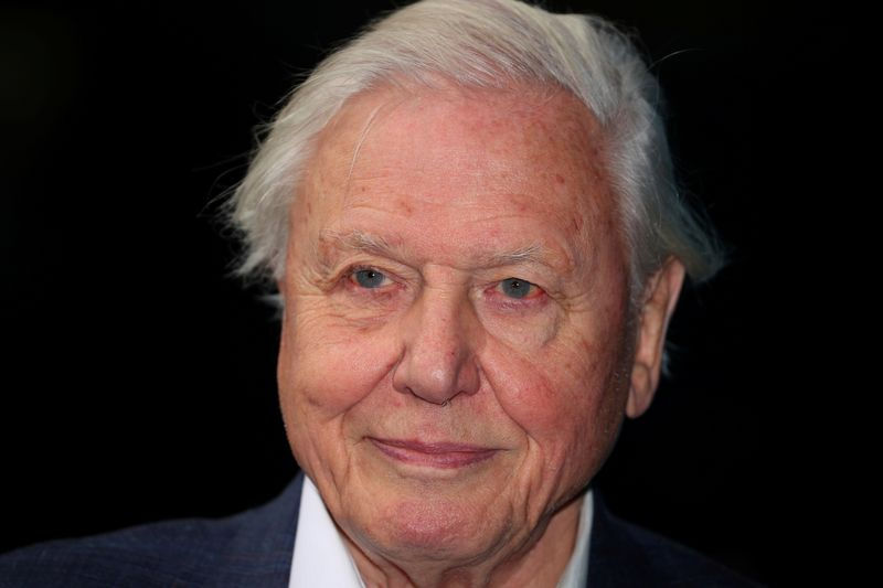 David Attenborough named COP26 People's Advocate ahead of key climate summit
