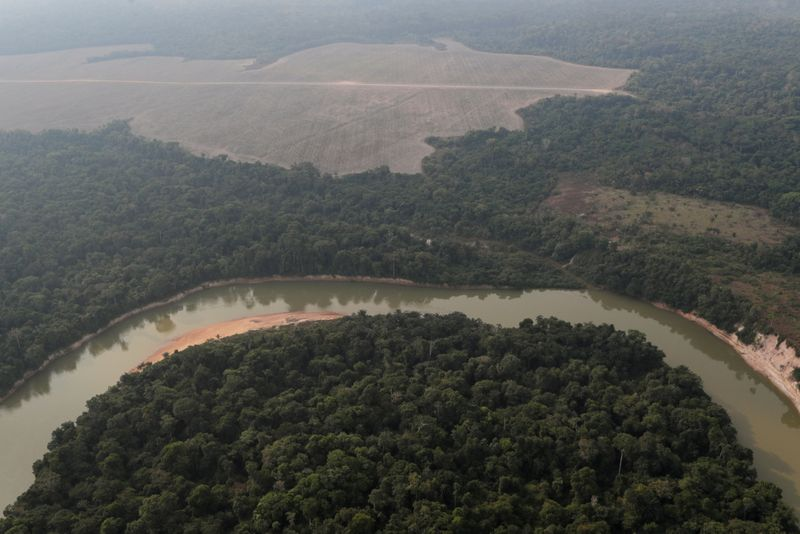 Deforestation in Brazil's Amazon worsened in recent months, vice president says