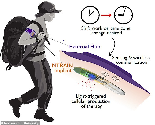 When triggered wirelessly by an external hub, the device would use light to trigger the cellular production of precise peptide doses to adjust the user's body clock, as depicted