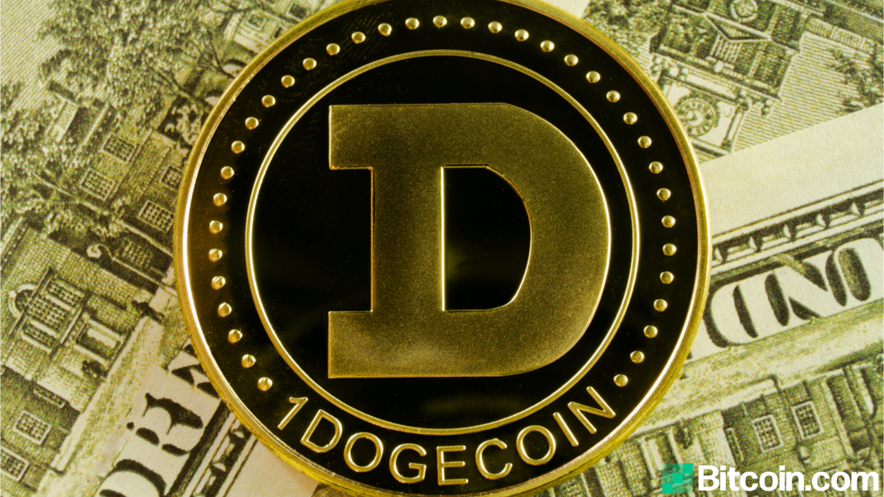 Survey: 1 in 4 American Investors Believe Dogecoin is the Future