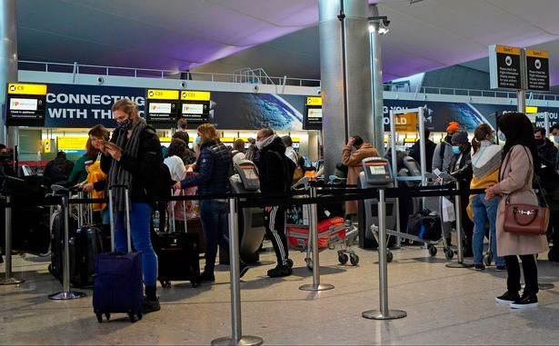 Queues at the check-in desks at Heathrow Airport last December (file photo)