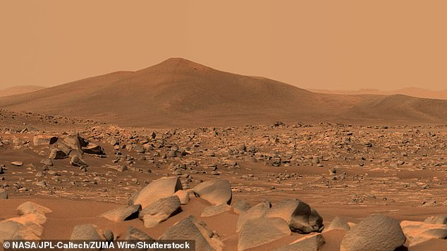 The Martian surface (specifically the Jezero Crater), as seen by the Curiosity rover