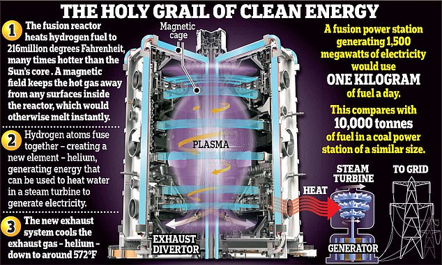 How it works: This graphic shows the inside of a nuclear fusion reactor and explains the process by which power is produced. At its heart is the tokamak, a device that uses a powerful magnetic field to confine the hydrogen isotopes into a spherical shape, similar to a cored apple, as they are heated by microwaves into a plasma to produce fusion