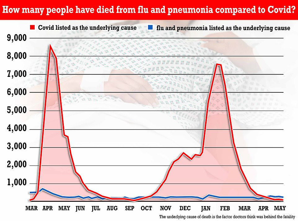 For comparison, flu and pneumonia (blue line) were behind 287 fatalities. This was more than four times above the 66 deaths where Covid was listed as the underlying cause (red line)
