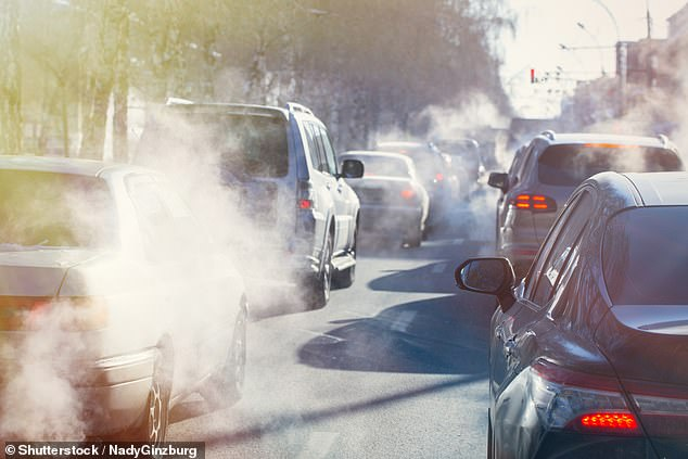 He says: 'There are questions that remain unanswered about pollution and the brain, though. One is whether pollution is just a subtle effect on your thinking skills or does it have a structural effect on the brain'