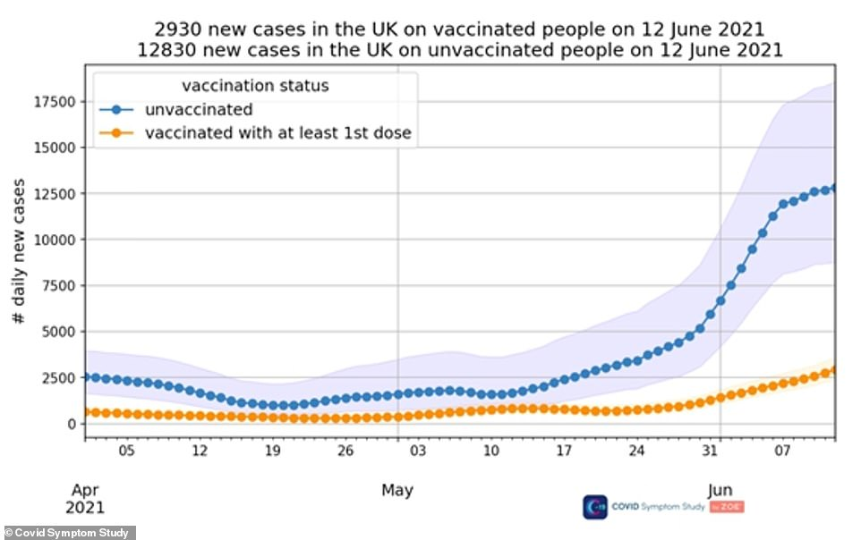 A more detailed analysis showed that an estimated four times as many unvaccinated people are getting symptoms of the virus compared to those who have had both jabs – 12,830 per day (blue line) compared to 2,930 (orange line)