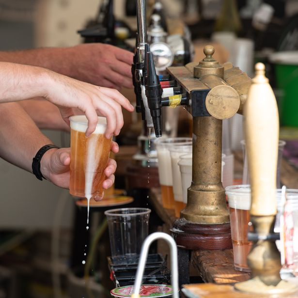 A bartender pouring pints of lager beer in plastic pint cups