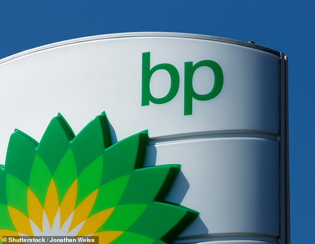 Paying the price: BP has faced 236 fines worth £20.6billion, most of which were driven by the Deepwater Horizon oil spill in the Gulf of Mexico in 2010