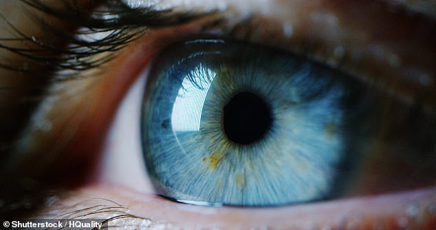 People who have larger pupils in their eyes are more intelligence than those with smaller pupils, according to a new study. Stock image
