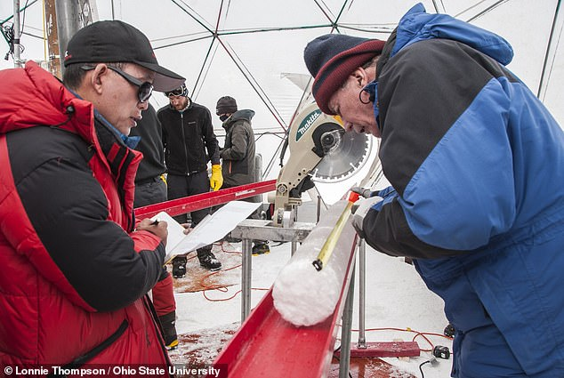 Employing a novel method of analysing microbes and viruses in ice samples (like the pictured core) without contaminating them, the team concluded the viruses lived in soil or plants
