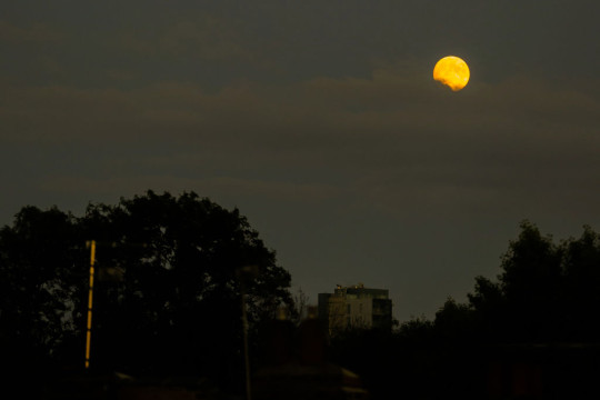 A Full Moon also know as Buck Moon is seen in north London.