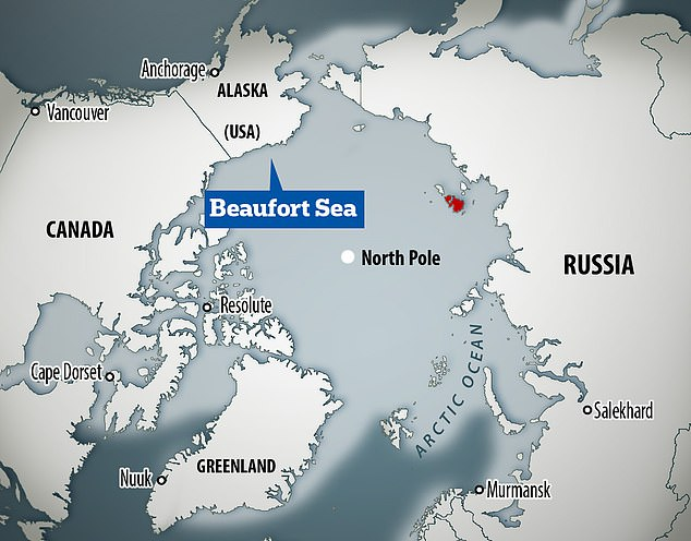 Record-breaking winter winds have driven eight per cent of the Arctic's entire perennial ice store into the Beaufort Sea, a southerly region where two thirds of ice melts in the summer