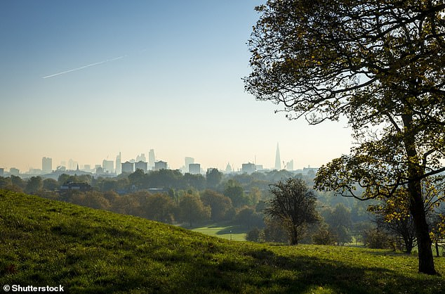 Pictured, Primrose Hill Park in North London at sunrise.The experts think 'greenness' is not only conducive to cleaner air being breathed in, but makes people less stressed and therefore less prone to developing CVD