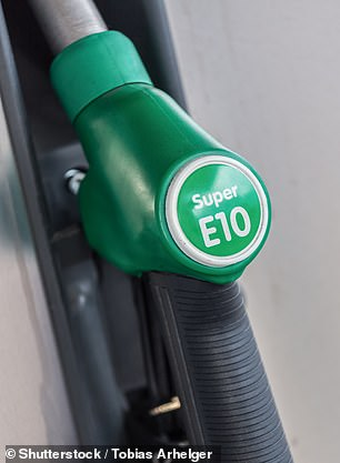 The AA has warned Britons not to panic buy petrol ahead of the introduction of E10 unleaded next year - though says petrol-powered lawnmowers and generators won't be able to run on the greener fuel