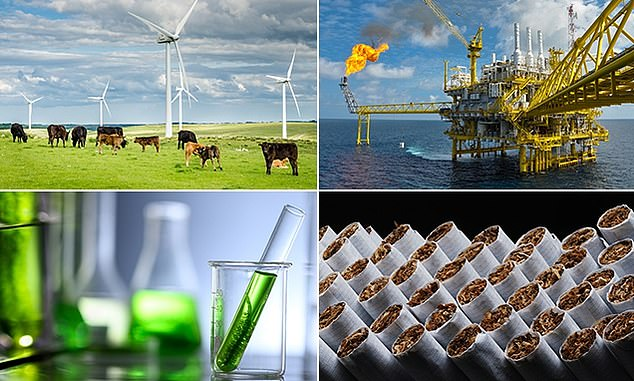 Sustainable energy and biotech are among sectors forecast to do well, while fossil fuel and tobacco industries are expected to be among the poorest performers