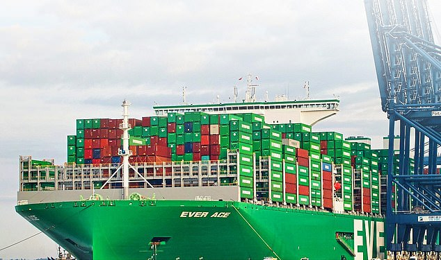 Sail on: Despite the slowdown, the world¿s largest container ship Ever Ace is on its maiden voyage, and is pictured at Felixstowe on Sunday