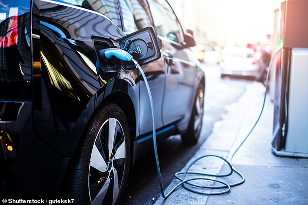 Environmental concerns:Over half of those planning to buy a greener car said they've become more environmentally conscious after the Covid outbreak