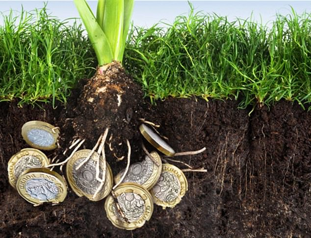 Digging deep:The basics include weeding out persistently poorly performing investments and sowing the seeds for new, hopefully profitable, ones