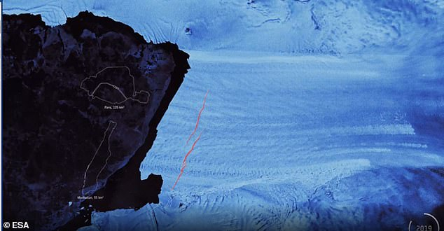 New imagery from 2019 shows two 20-kilometer cracks (pictured above) in the sea ice on Pine Island Glacier