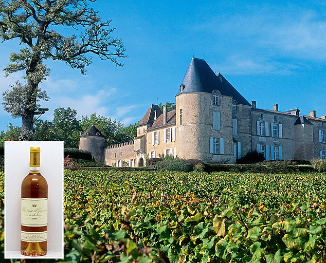 Promise: The Chateau D'Yquem vineyard in France and a bottle of the 1999 wine