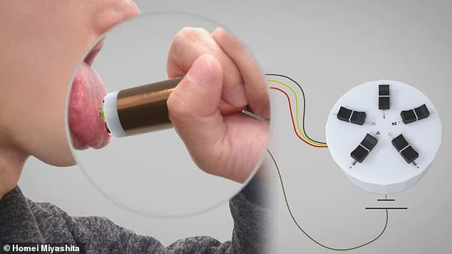 Users place the end of the device on their tongue and harmless electrical charges are released that can be increased or lowered to simulate a specific taste