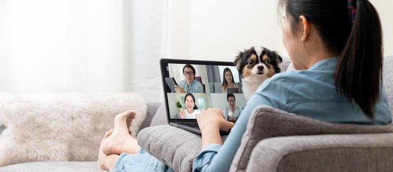 wfh woman laptop dog