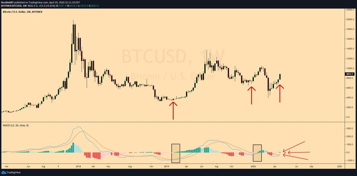 Bitcoin weekly chart sees start of new MACD trend. Source: RookieXBT