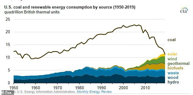 Wind power and hydroelectricity were the two biggest sources of renewable energy across all sectors