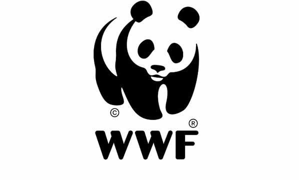 Need stronger policies for cleantech SMEs, startups: WWF India