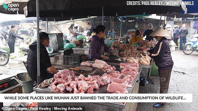 Vietnam is thought to be considering a ban on wet markets, although it is unclear whether this will go ahead. The country has suffered less than 1,000 cases of coronavirus