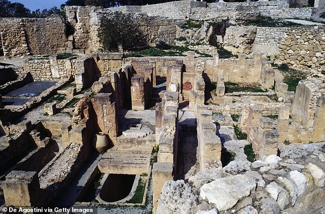 Though many listings don't specify the origin source for their listed items, some point to important archaeological sites, including a listing for a skull claiming to be from catacombs in Sousse, Tunisia