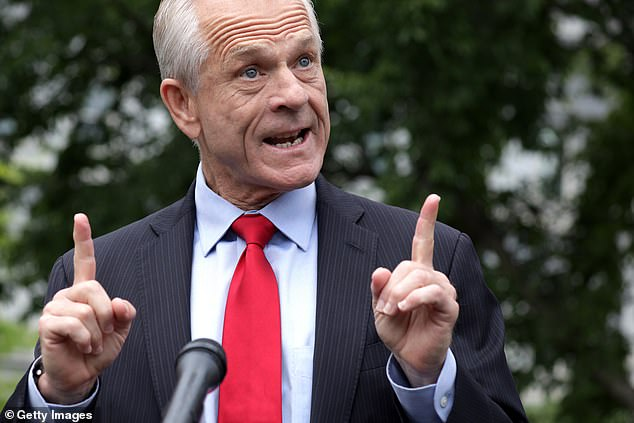 White House economic adviser Peter Navarro paised the findings of the new study and claimed that if they'd been made earlier, tens of thousands of lives could have been saved and hit out at the FDA, incorrectly blaming the agency for 'shutting down' hydroxychloroquine studies