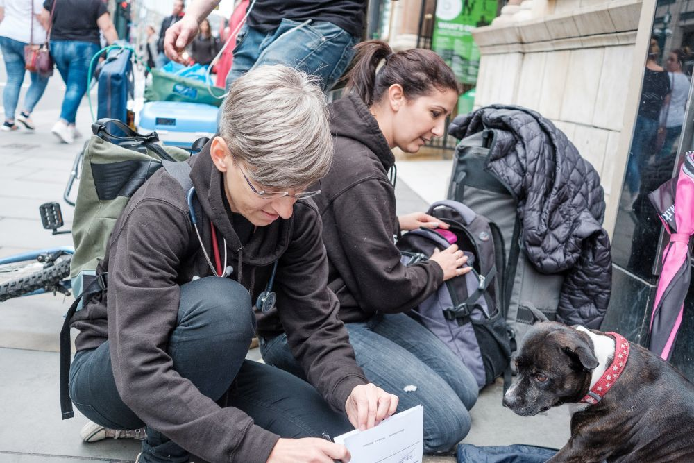 StreetVet provides support to animals living with homeless owners