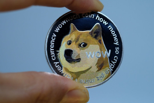 Dogecoin has continued its massive surge (Yuriko Nakao/Getty Images Europe)
