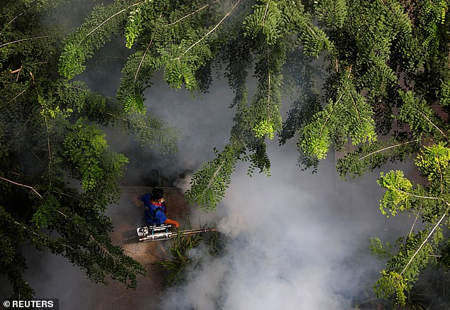 A worker sprays for mosquitoes in Singapore. Insecticides only keep mosquitoes away for a few days and insects can develop resistance