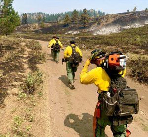 Diamond State wildfire crew